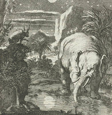 Hare And Elephant With A Full Moon Near A Spring Art Print