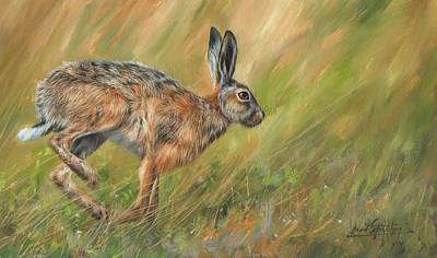 Hare Wall Art - Painting - Hare by David Stribbling