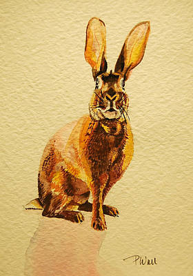 Hare Art Print by Pattie Wall