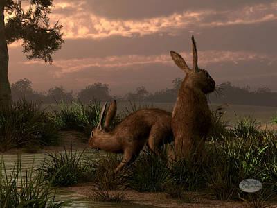 Hares In The Wetlands Art Print by Daniel Eskridge