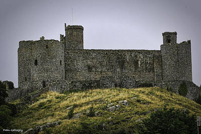 Photograph - Harlech Castle by Fran Gallogly