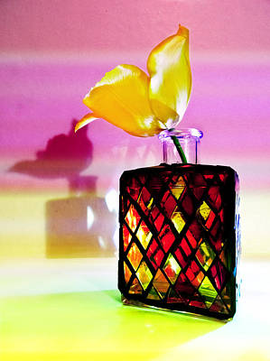 Photograph - Harlequin Bottle With Yellow Tulip by Shawna Rowe