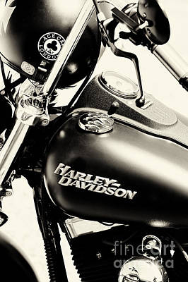 Harley Davidson Photograph - Harley Davidson Sepia by Tim Gainey