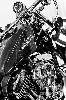 Sportster Photograph - Harley Davidson Sportster by Tim Gainey