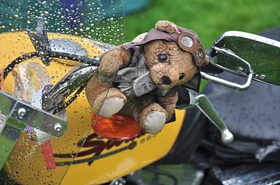 Photograph - Harley Mascot by Graham Hawcroft pixsellpix
