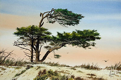 Windblown Painting - Harmony Of Nature by James Williamson