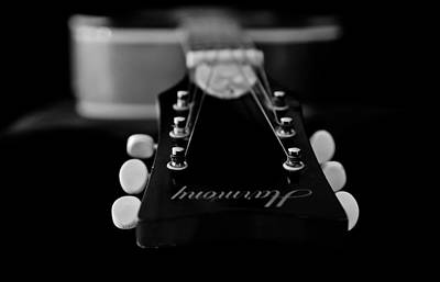 Photograph - Harmony Strings Black And White by Athena Mckinzie