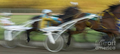 Harness Racing Photograph - Harness Racing 6 by Bob Christopher