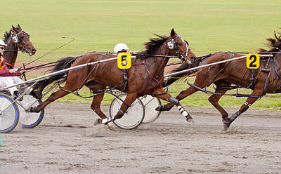 Harness Racing Photograph - Harness Racing by Michelle Wrighton