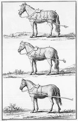 Harnesses, 18th Century Art Print