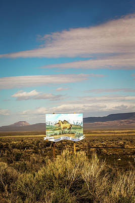 Alvord Desert Wall Art - Painting - Harney County, Or, Usa. A Painted Horse by David Hanson