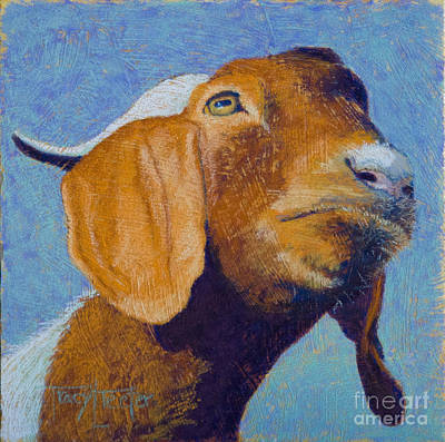 Pastel - Harold by Tracy L Teeter