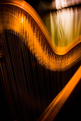 Photograph - Harp by David Smith