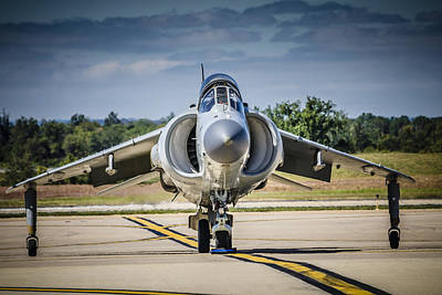 Photograph - Harrier 2 by Bradley Clay