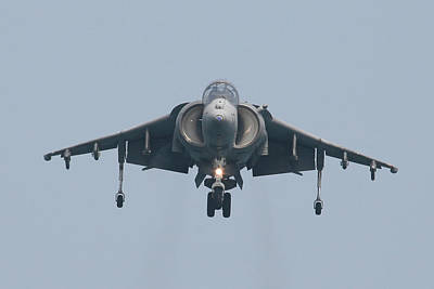 Photograph - Harrier Gear Down Straight On by Donna Corless