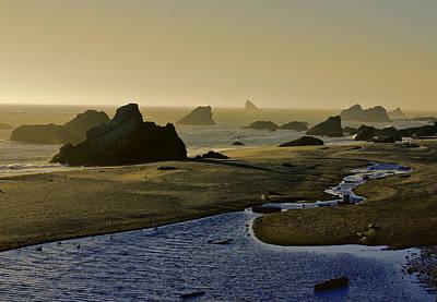 Photograph - Harris Beach by Jeanne Hoadley