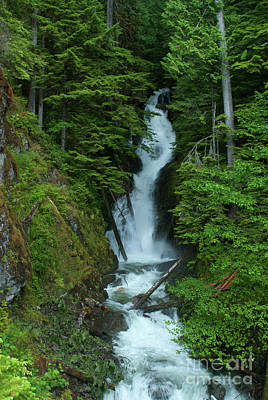 Art Print featuring the photograph Harrison Lake Road Falls by Rod Wiens