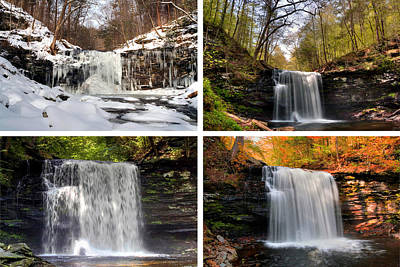 Photograph - Harrison Wright Falls In Every Season by Gene Walls