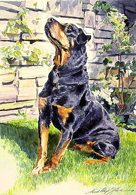 Watercolor Pet Portraits Painting - Harry The Doberman by David Lloyd Glover