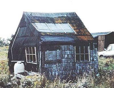 Shed Mixed Media - Harry's Shed by Real Lachance
