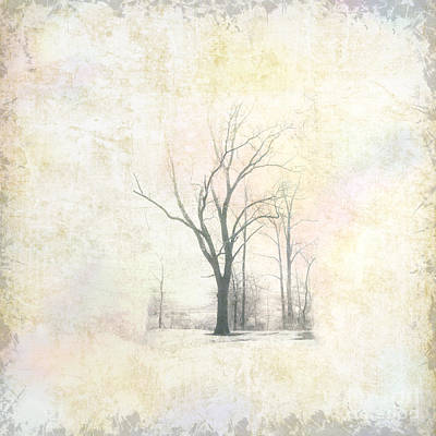 Bare Trees Digital Art - Harsh I by Pamela Baker