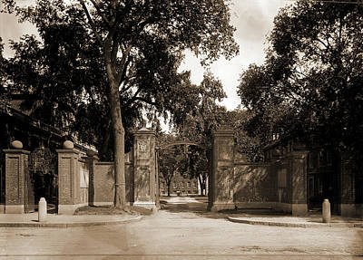 Harvard Drawing - Harvard Gate, Harvard College, Harvard University by Litz Collection