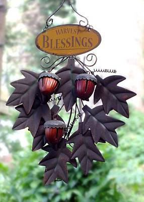 Photograph - Harvest Blessings by Peggy King