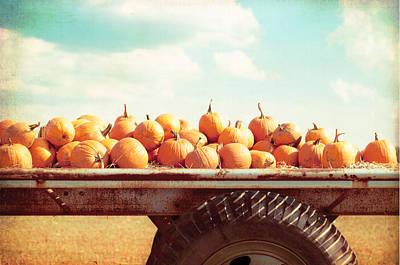 Pumpkin Fields Photograph - Harvest by Carolyn Cochrane