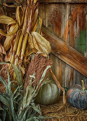 Photograph - Harvest Corner by Nikolyn McDonald