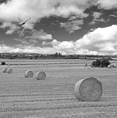 Harvest Fly Past Black And White Square Art Print by Gill Billington