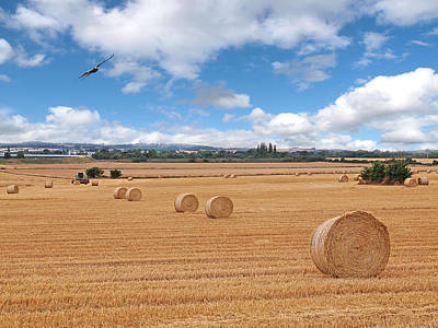 Harvest Fly Past Art Print by Gill Billington