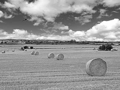 Harvest Fly Past In Black And White Art Print by Gill Billington