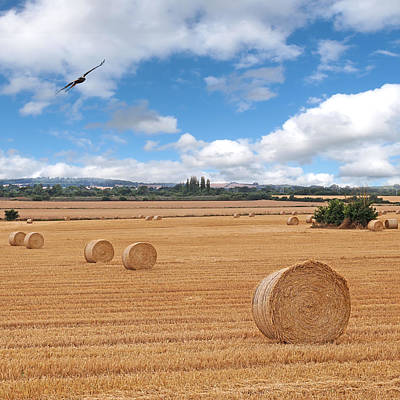 Harvest Fly Past Square Art Print by Gill Billington