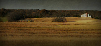 Photograph - Harvest Grove by Jeff Mize