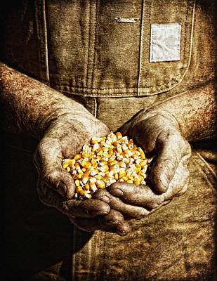 Harvest In His Hands Art Print