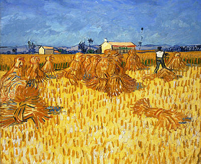 Corn Painting - Harvest In Provence, June 1888 by Vincent van Gogh