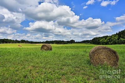 Photograph - Harvest by Mina Isaac