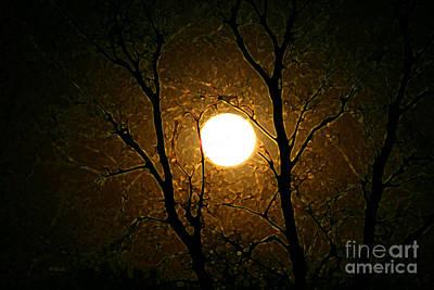 Mixed Media - Harvest Moon by E B Schmidt