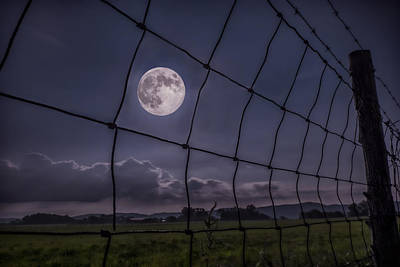Photograph - Harvest Moon by Jaki Miller