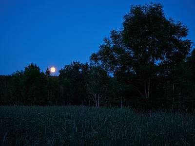 Photograph - Harvest Moon by Jouko Lehto