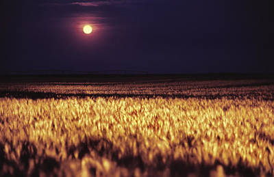 Photograph - Harvest Moon Over Kansas by Jason Politte