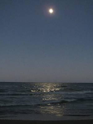 Photograph - Harvest Moonrise by Denise   Hoff