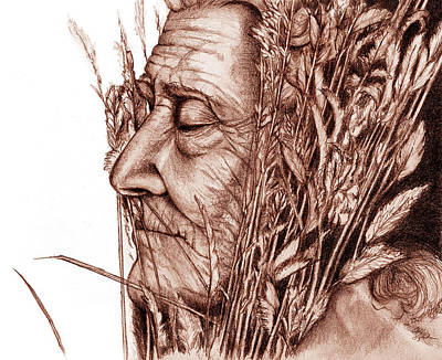 Drawing - Harvest by Penny Collins