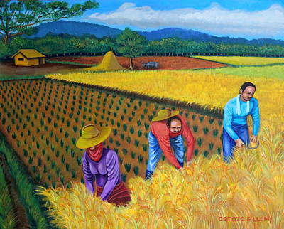 Rice Field Painting - Harvest Season by Lorna Maza