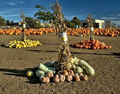 Harvest Season  Original