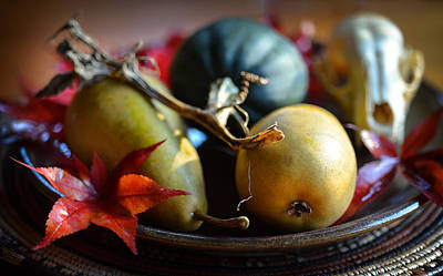 Photograph - Harvest Still Life 2 by Ronda Broatch