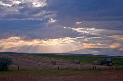 Photograph - Harvest Sunbeams  by Eric Rundle