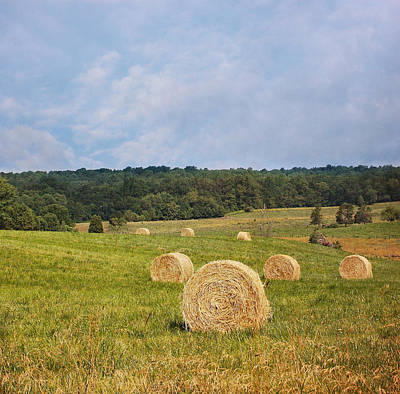 Photograph - Harvest Time by Kim Hojnacki