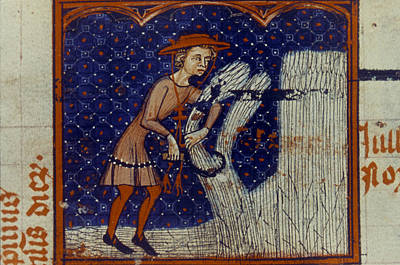 14th Century Painting - Harvesting, 14th Century by Granger