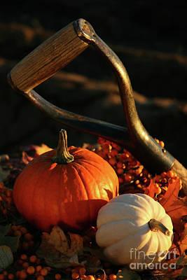 Harvesting For Thanksgiving Art Print by Sandra Cunningham